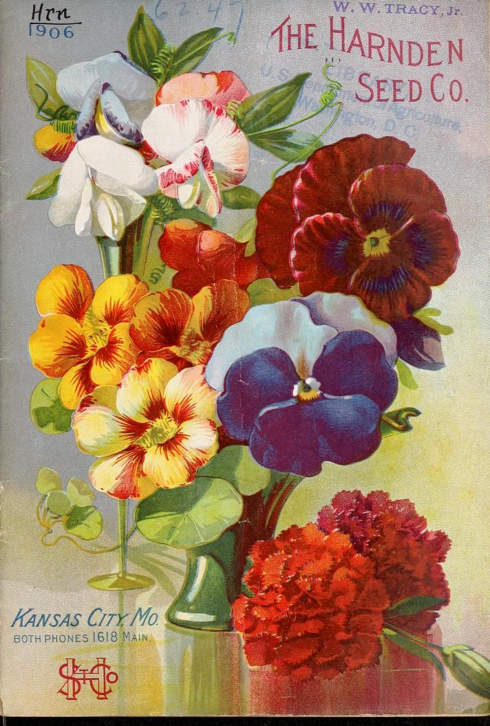 The Harnden Seed Company's annual catalogue for 1906