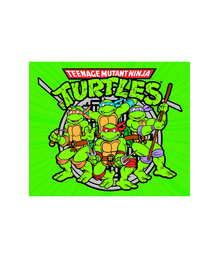1000 Images About Teenage Mutant Ninja Turtles Collection