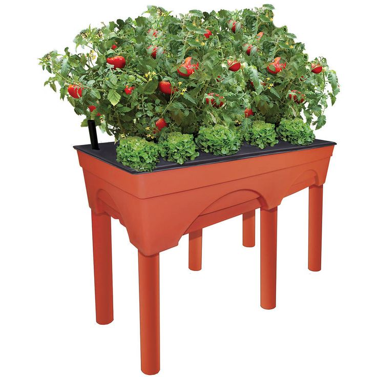 Emsco Group 3346 Big Easy Pickers Raised Garden Grow Box *** You can get additional details at the image link.