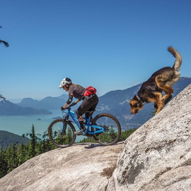 Pin On Mountain Bike Trails