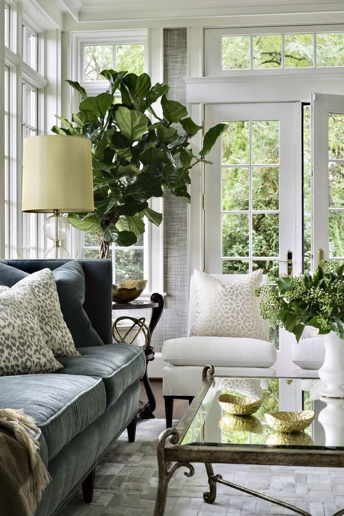 Love the wallpaper, windows and trim! Dark grey elves couch, white slipper chairs, sea grass wallpaper, fiddle leaf