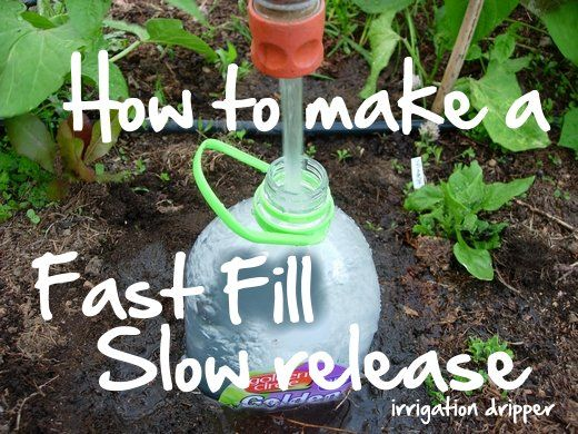 Instructions for making a drip irrigation device from repurposed plastic bottles. I have seen this with clay pots called cantaros. Looking forward to doing this to ensure deep watering of my garden even if I have to miss a day of watering.