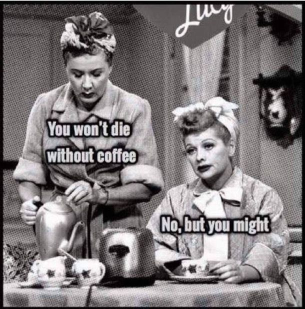 10 Funny Coffee Quotes That Will Start Your Morning In The Right Way In 2021 Coffee Humor Coffee Quotes Funny