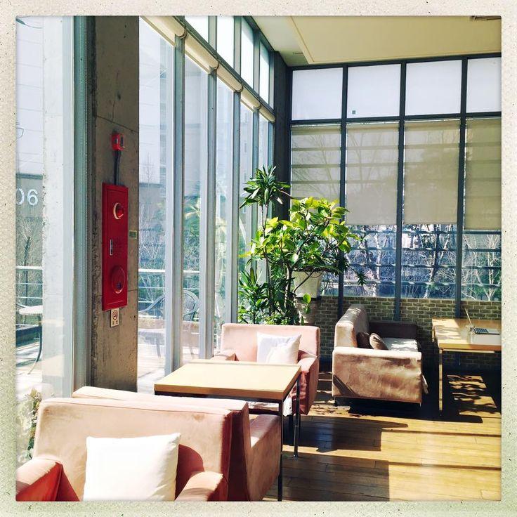 BeArt Gallery Cafe - Mollakorea