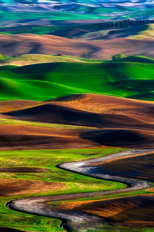 The Palouse region, Washington State, USA | by Michael Brandt Photography