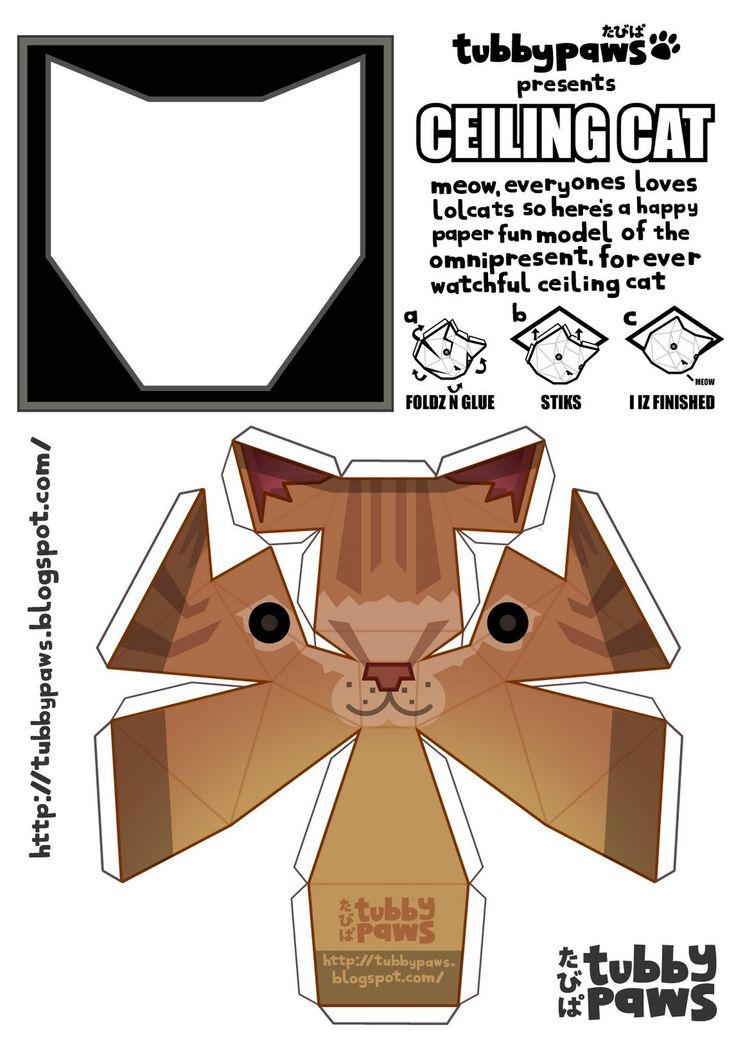 Tubbypaws. A link to the original Ceiling cat.  http://tubbypaws.blogspot.com/2008/03/meow-you-can-has-lolcats.html#