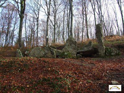 Les pierres Gauloises hérmoncourt