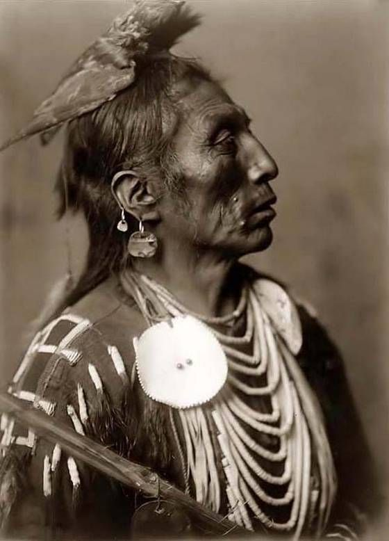 crow, native american