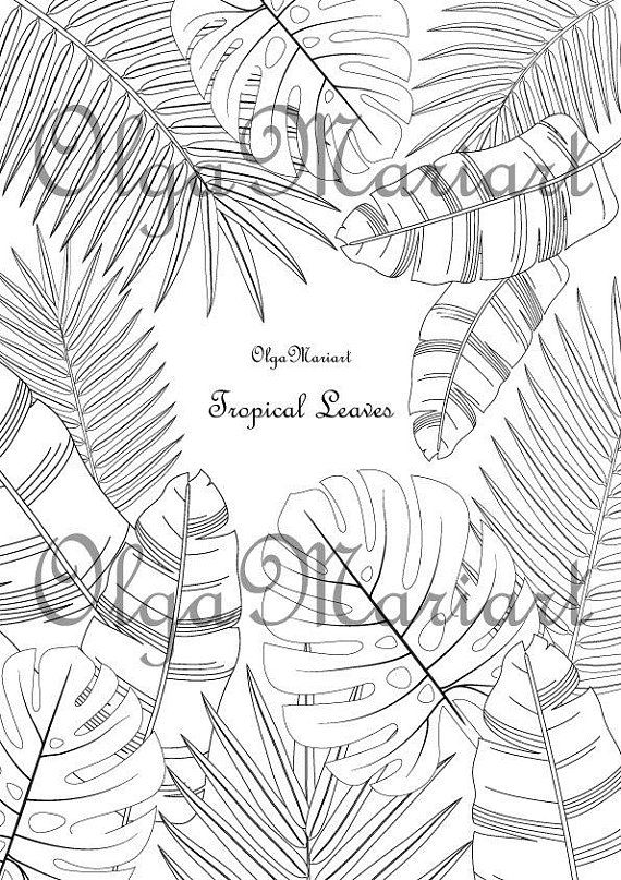 Coloring Page Tropical Leaves Digital Download Pdf File Leaf