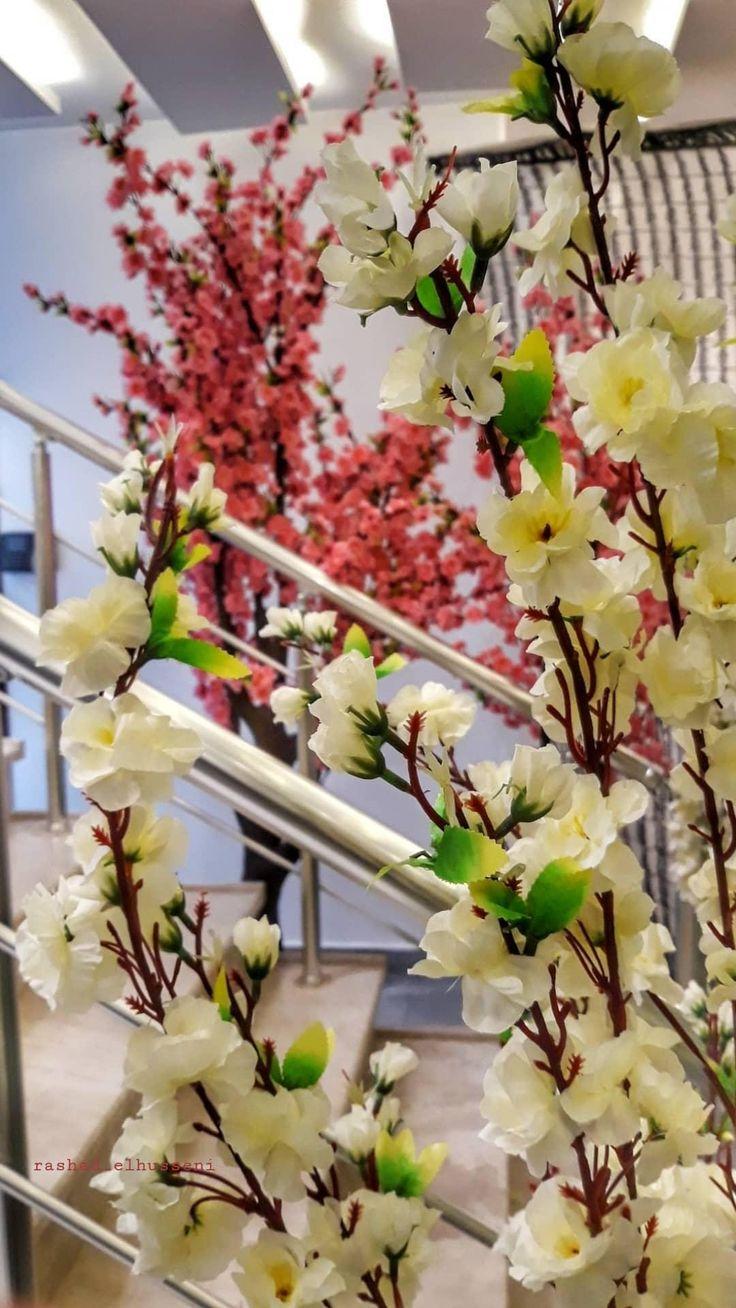 Flowers Flower Photography Instapic Petal Petals Nature Beautiful Love Pretty Plants Blo Instagram Photo Flowers Instagram