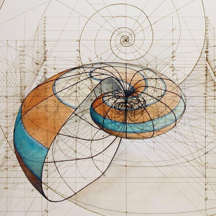 Coloring Fibonacci In Nature in 2020   Fibonacci spiral ...