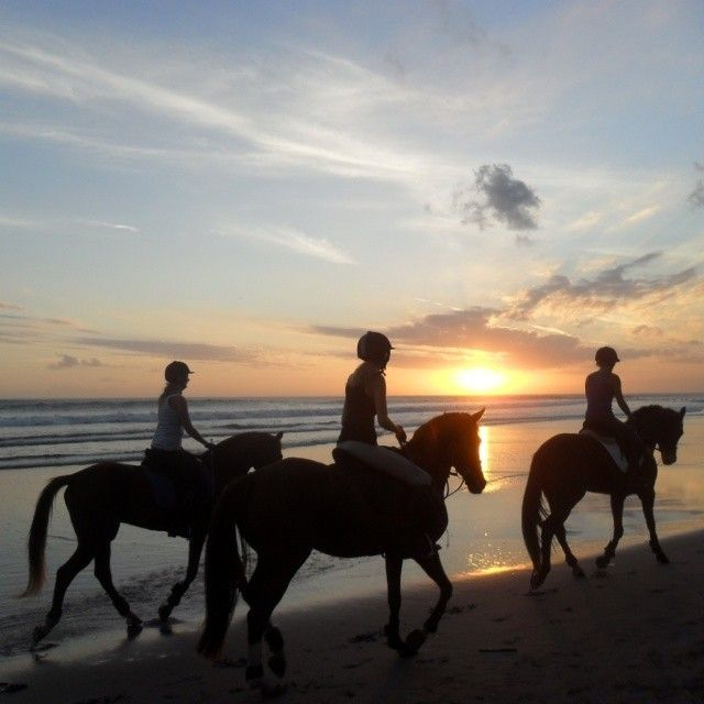 When the sunset coming. #horseridding #horse #bali #baliholiday #balivacation #geriabalivacation #geriabali #glipho #globetrotter #globalportraits #destinosmaravilhososbyeli #thegoldlist...