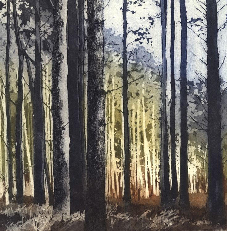 """""""A Walk in the Forest"""" etching by Chrissy Norman. http://www.chrissynorman.co.uk/ Tags: Linocut, Cut, Print, Linoleum, Lino, Carving, Block, Woodcut, Helen Elstone, Trees, Woods, Forest."""