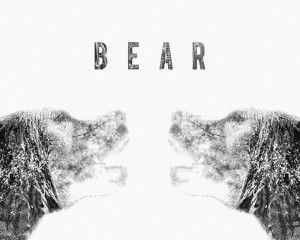 Grey Bear New HD Wallpaper Wide