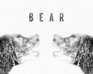 Grey Bear New HD Wallpaper Wide