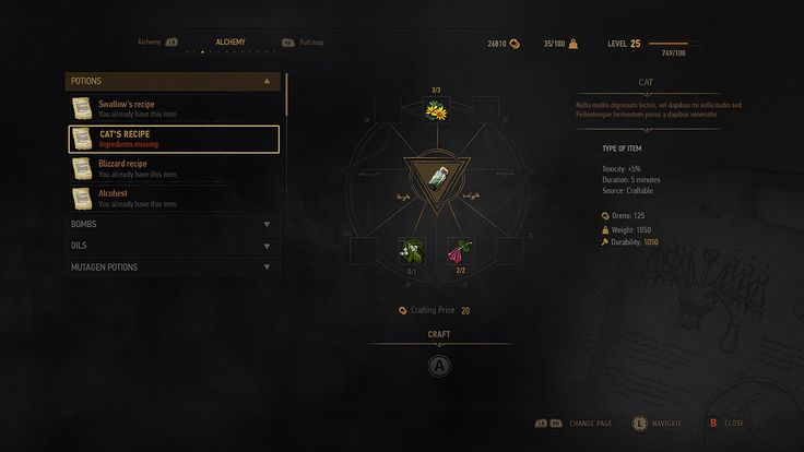 ArtStation - THE WITCHER 3: UI ART, Fernando Forero