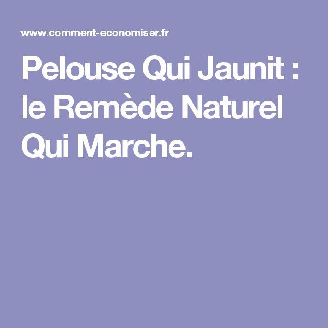 Pelouse Qui Jaunit : le Remède Naturel Qui Marche.