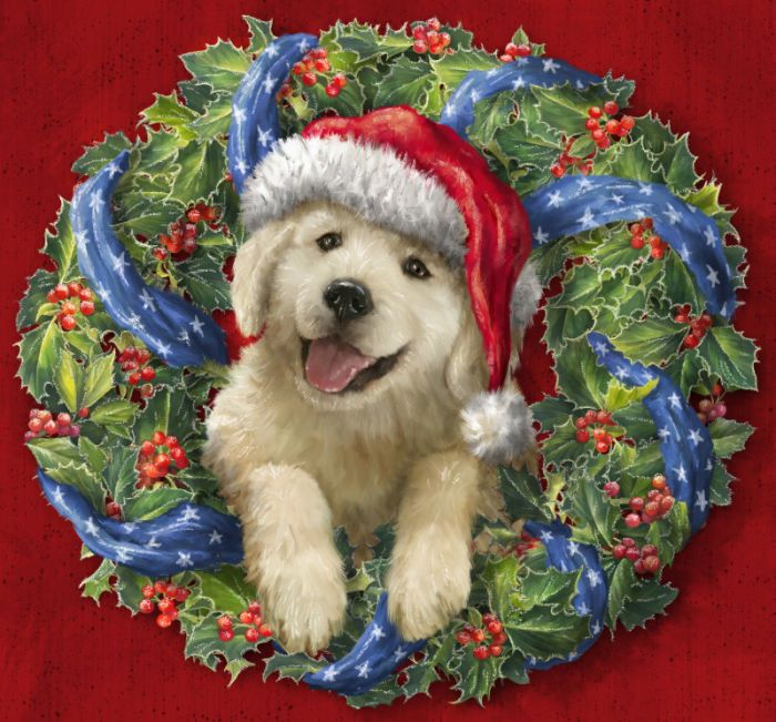 294 Best Christmas Animals Images On Pinterest Christmas