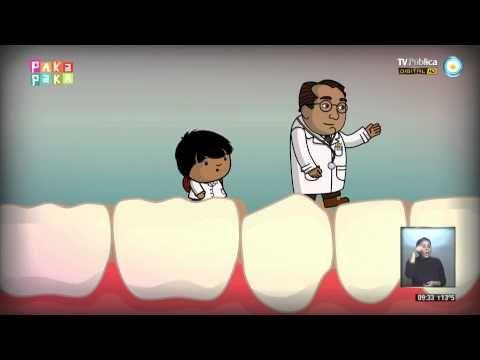 Spanish video for Spanish body parts Zamba - Excursión al cuerpo humano: los dientes - YouTube