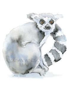 Ring-tailed Lemur watercolor giclée reproduction. Portrait/vertical orientation. Printed on fine art paper using archival pigment inks. This quality printing allows over 100 years of vivid color in a