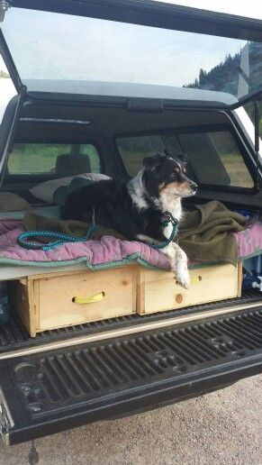 My truck build. 2004 Toyota Tacoma 4x4, manual transmission regular cab. Does great on gas mileage, and all gear stows away neatly under the bed. Throw a memory foam topper in and call the dog. Road trip time!