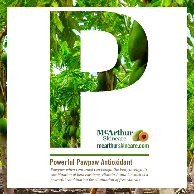Pawpaw is a powerful antioxidant  Pawpaw when consumed can benefit the body through its combination of beta carotene, vitamin A and C which is a powerful combination for elimination of free radicals.  #didyouknow #mcarthurskincare #pawpaw #papaya #papain #australianmade #petrochemicalfree #notoxins #noparabens #nonasties #nochemicals #freeradicals #oxidativestress