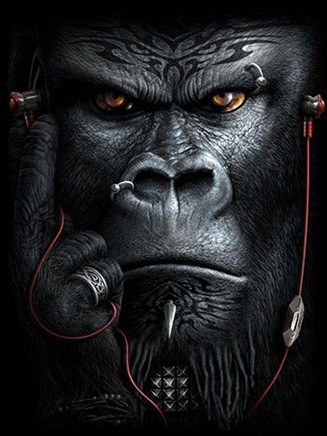 gorilla julianne mcpeters animals in 2019 monkey art lion rh pinterest com