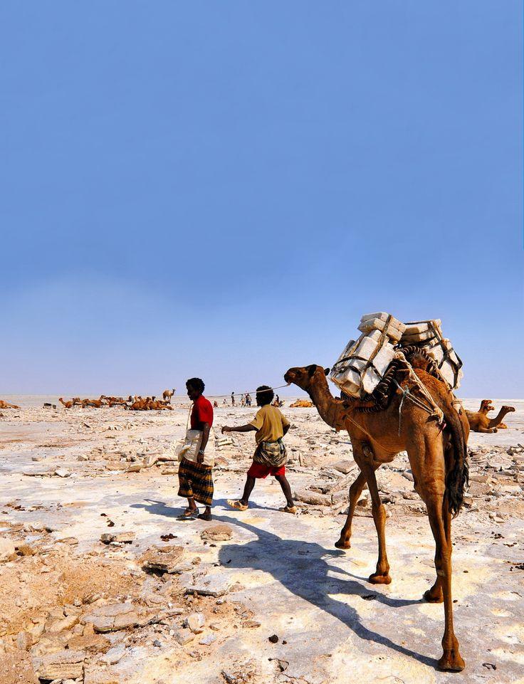 Ethiopia, Dancalia - salt desert