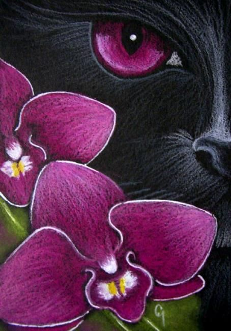 Art Black Cat Behind The Magenta Dendrobium Orchid By