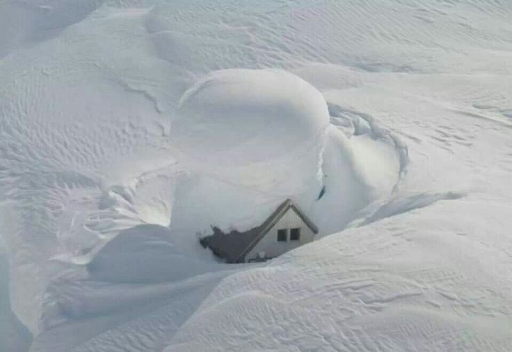 Need to clear some snow