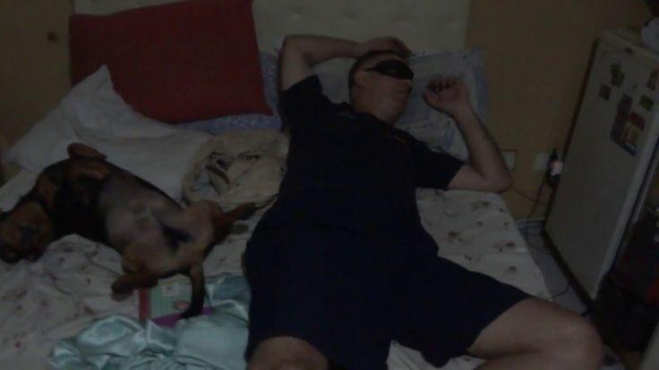 homem mascarado e Cachorro  Salsicha  dormindo e roncando.