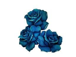 blue rose tattoo - Google Search