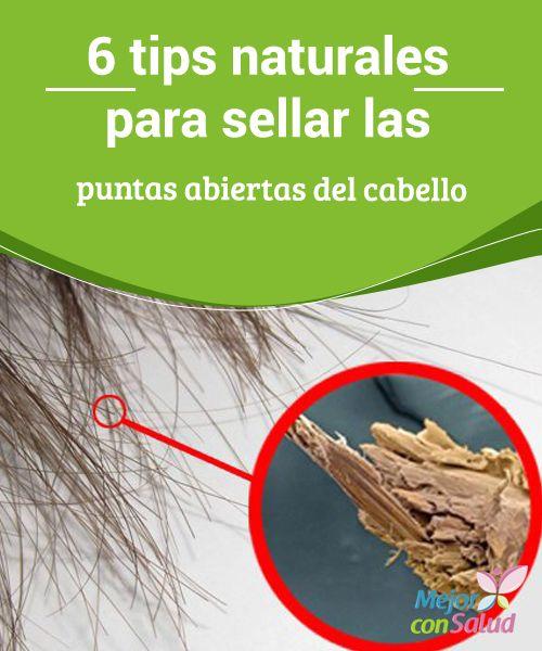 6 tips naturales para sellar las puntas abiertas del cabello   ¿Tienes las puntas del cabello abiertas? Te damos 6 tips naturales para que las trates sin tener que cortarlas. ¡Pruébalos!