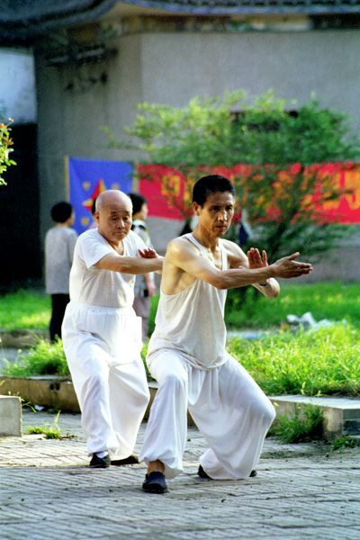 """""""Tai Chi's slow moves reveal what happens when we're moving too fast to notice."""" - TAI CHI CROSSROADS BLOG: taichicrossroads.blogspot.com #TaiChi"""