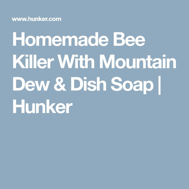 Homemade Bee Killer With Mountain Dew & Dish Soap | Hunker