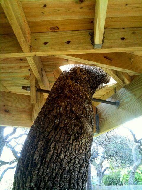 94 best treehouses images on pinterest treehouse treehouse ideas
