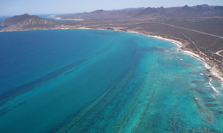 Cabo Pulmo - once again under threat from developers (please read) http://earthjustice.org/features/ourwork/defending-the-gulf-of-california-s-coastline