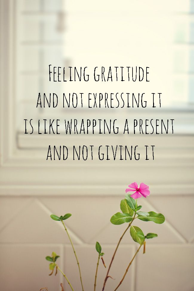 I'm learning how to be grateful. Feeling gratitude and not expressing it is like wrapping a present and not giving it. William Arthur Ward. This is a blog on gratitude. quotes for gratitude. expressing gratitude quotes. I love william ward quotes. I'm being grateful. expressing gratitude. gratefulness.