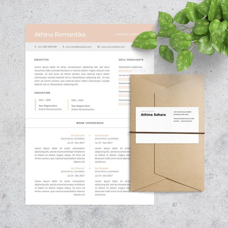 Clean Resume and Profesional Resume