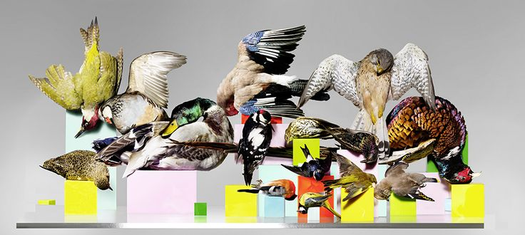 02 COLOR | Uponpaper by Nick Knight
