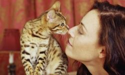 "Discovery Health ""Top 5 Cat Allergy Symptoms"""