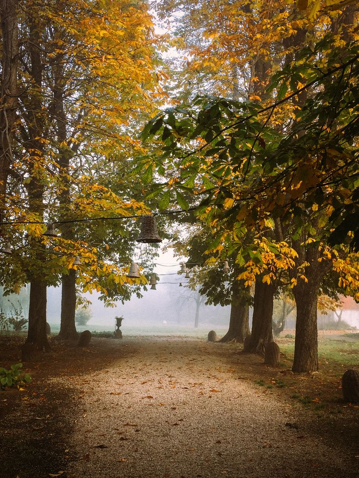 Just like an Autumn tale