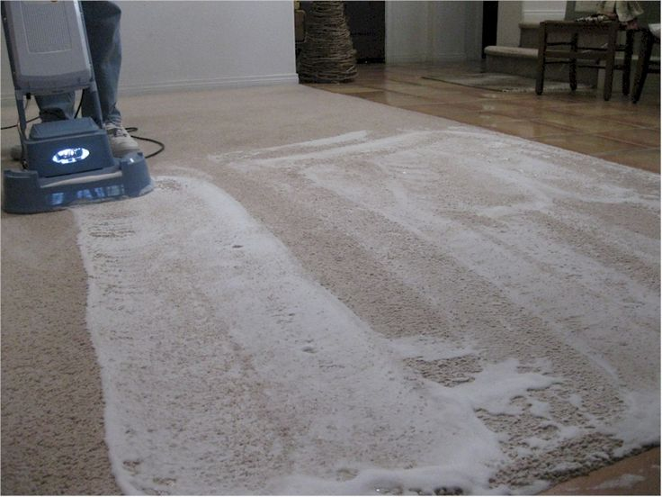 Shampoo Carpet With Vinegar Video Search Engine At