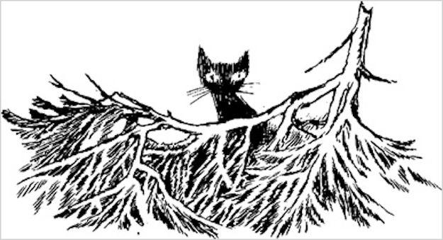 Tove Janson. 30 autores de renome Inspiradas por gatos