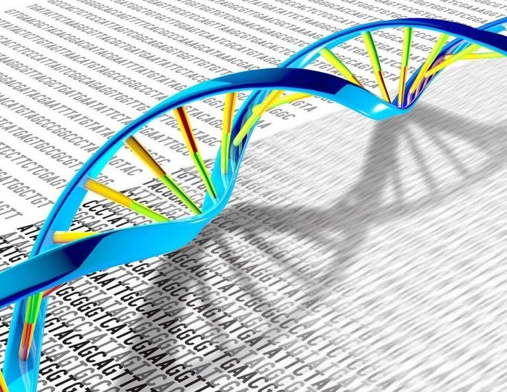 High-precision technique stores cellular 'memory' in DNA