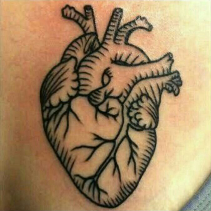 the 25 best ideas about anatomical heart tattoos on pinterest tree heart tattoo anatomical. Black Bedroom Furniture Sets. Home Design Ideas