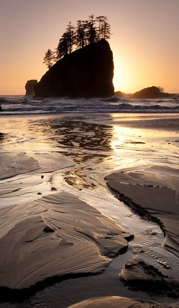 La Push, Olympic National Park, Washington.