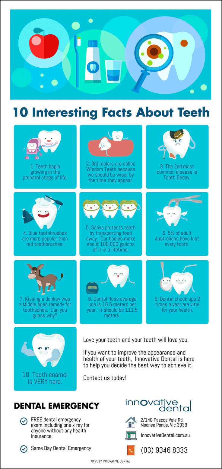 10 Interesting Facts About Teeth  innovativedental.com.au