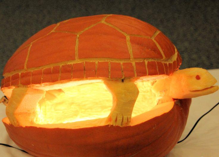 Best pumpkin carving contest ideas on pinterest