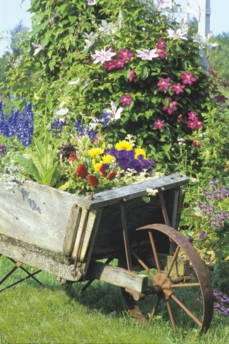 I would love an old wheelbarrow like this....